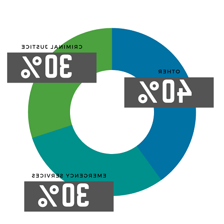 A pie chart showing the percentages of the student cohort background